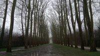 Зимой в Версале дождливо