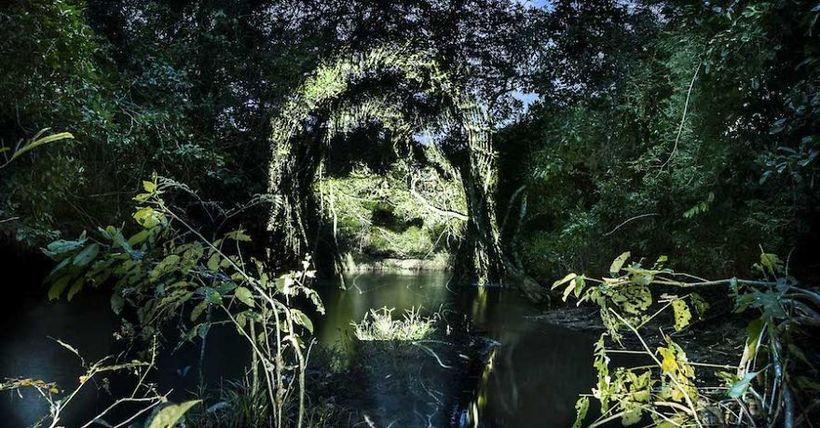 Душа Амазонки: француз с помощью света создает невероятный стрит-арт в джунглях