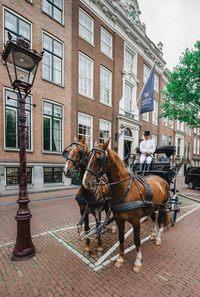 Взгляните на Рим и Амстердам по-новому вместе с отелями Waldorf Astoria