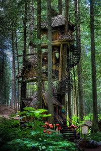 17 изумительных домиков на дереве со всех уголков мира