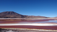 Боливия Многонациональное Государство Боливия. laguna colorada