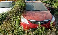 11 фото с заброшенной парковки в Китае с автомобилями на миллионы долларов