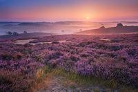 10 восхитительных причин записать Нидерланды в свои планы на следующее лето