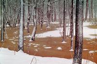 Самые восхитительные пейзажи России в объективе Вадима Гиппенрейтера