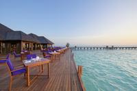 Гастрономическое путешествие в Sun Siyam Resorts