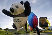 Панда готовится к полету на фестивале воздушных шаров