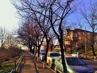Улица осенью в Ереване