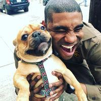Водитель из США развлекается на работе, фотографируясь с каждой встречной собакой